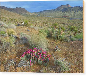 Spring In The Foothills Wood Print