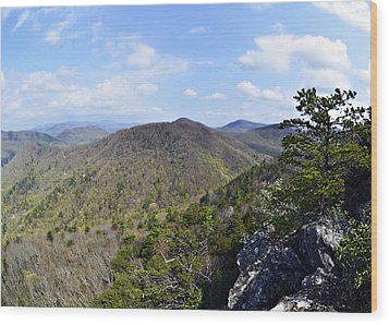 Spring In The Mountains Wood Print by Susan Leggett