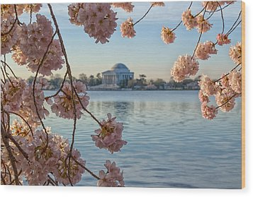 Spring In The Nation's Capital Wood Print by Jared Perry
