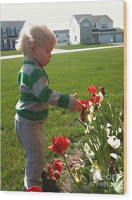 Spring Innocence Wood Print