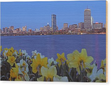 Spring Into Boston Wood Print by Juergen Roth