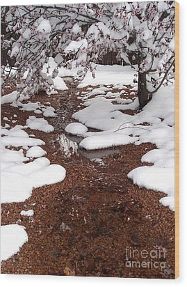 Wood Print featuring the photograph Spring Into Winter by Kerri Mortenson