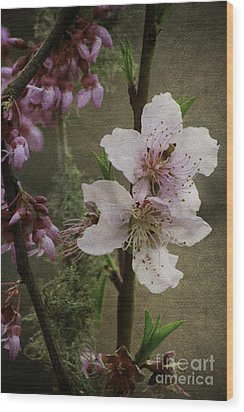 Wood Print featuring the photograph Spring Is Here by Lori Mellen-Pagliaro