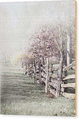 Spring Landscape With Fence Wood Print by Elena Elisseeva