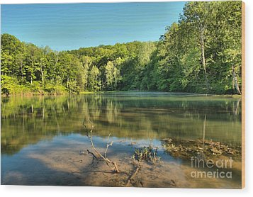 Spring Mill Lake Wood Print by Adam Jewell