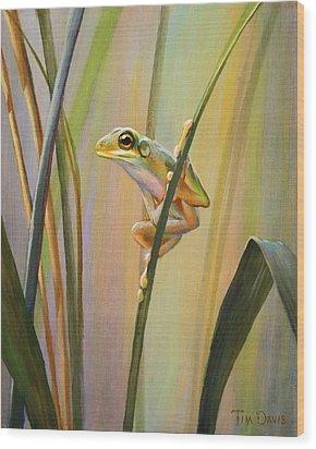 Spring Peeper Wood Print by Tim Davis