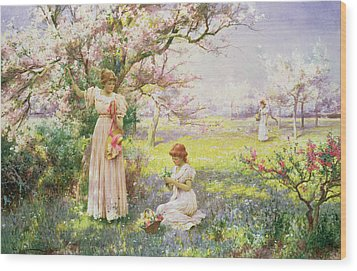 Spring   Picking Flowers Wood Print by Alfred Augustus I Glendenning