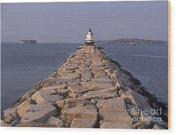Spring Point Ledge Lighthouse Wood Print by Bruce Roberts