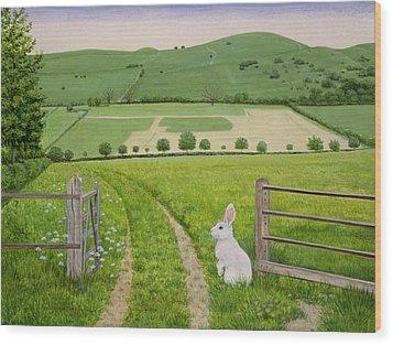 Spring Rabbit Wood Print by Ditz