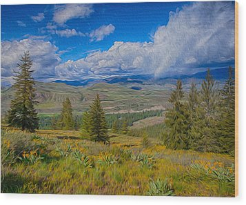 Spring Rain Across A Valley Wood Print by Omaste Witkowski