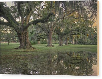 Spring Rain In New Orleans Wood Print by Ray Devlin
