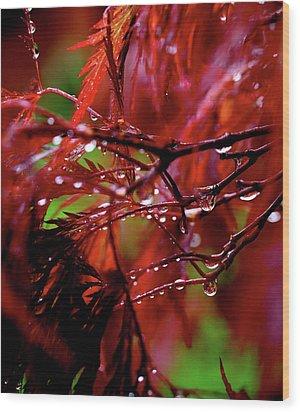 Spring Rain Wood Print by Rona Black
