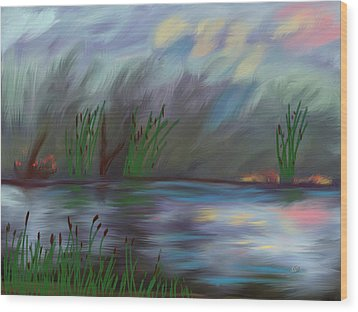 Spring Reed In The Canyon Wood Print by Angela A Stanton