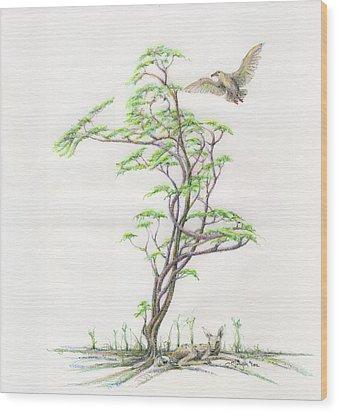 Spring Rising Wood Print by Mark Johnson