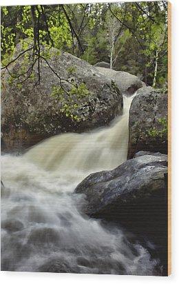 Wood Print featuring the photograph Spring Runoff by Ellen Heaverlo
