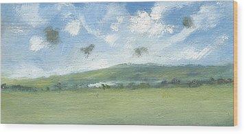 Spring Sky Bembridge Down Wood Print by Alan Daysh