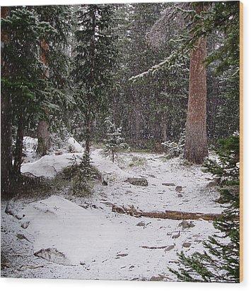 Spring Snow Shower Wood Print