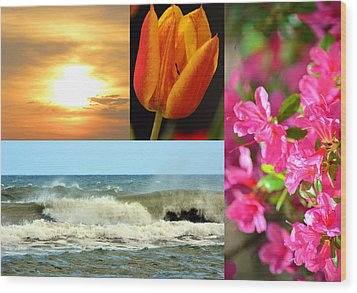 Spring Summer Collage Wood Print by Sandi OReilly