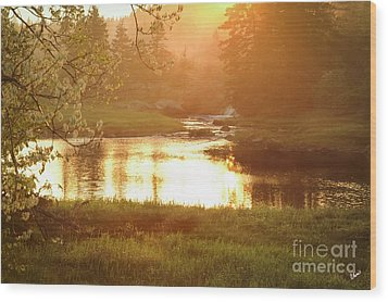 Spring Sunset Wood Print by Alana Ranney