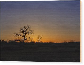 Spring Sunset Pops Through Trees Wood Print