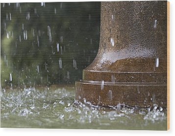 Wood Print featuring the photograph Spring Water Fountain by Colleen Williams