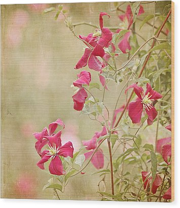 Spring Whisper Wood Print by Kim Hojnacki