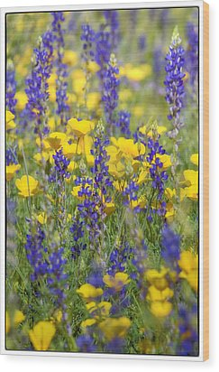 Spring Wildflower Bouquet  Wood Print by Saija  Lehtonen