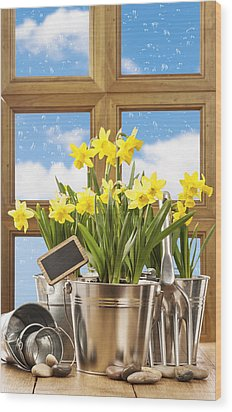 Spring Window Wood Print by Amanda Elwell