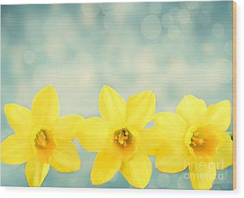 Spring Yellow Wood Print by Darren Fisher