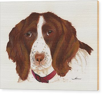 Wood Print featuring the painting Springer Spaniel  by Nan Wright