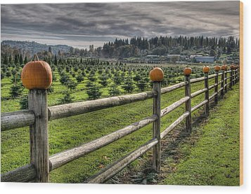 Springhetti Road Pumpkins Wood Print