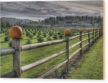 Springhetti Road Pumpkins Wood Print by Spencer McDonald