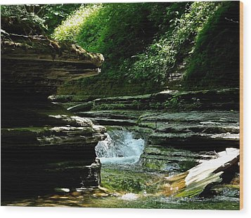 Wood Print featuring the photograph Springs Of Living Water by Christian Mattison