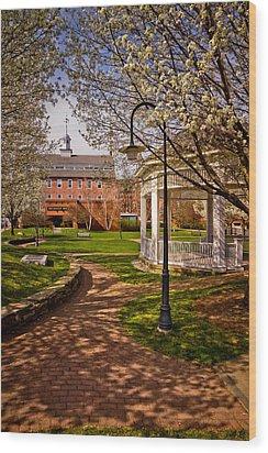 Springtime In Rotary Riverside Park Wood Print