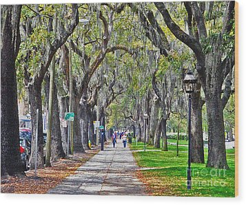 Springtime In Savannah Wood Print