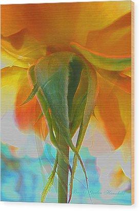 Spring In Summer Wood Print by Brooks Garten Hauschild