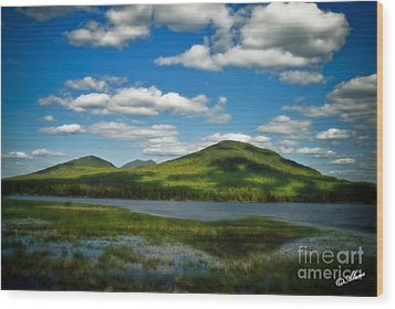 Wood Print featuring the photograph Springtime In The Bigelow Mountains by Alana Ranney