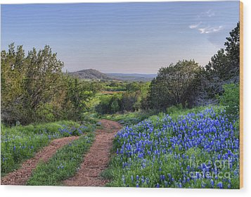 Springtime In The Hill Country Wood Print