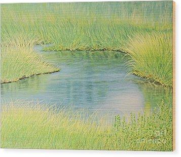 Springtime Marsh-new Beginnings Wood Print by Cindy Lee Longhini