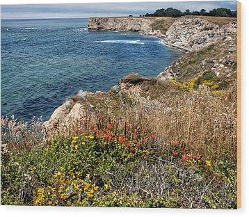 Springtime On The California Coast Wood Print