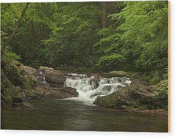 Springtime Rapids Wood Print by Andrew Soundarajan