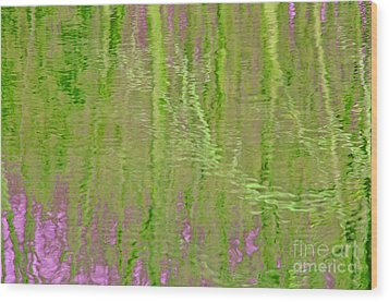 Springtime Reflections Wood Print by Cindy Lee Longhini