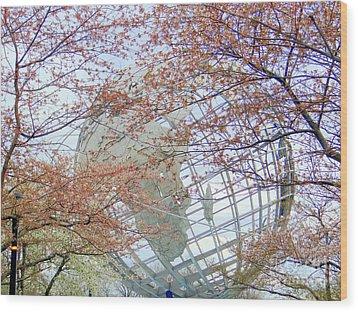 Springtime Round The World Wood Print by Ed Weidman