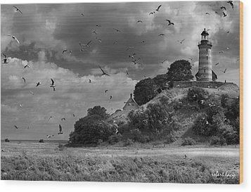 Sprogoe Lighthouse Wood Print by Robert Lacy