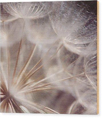Spun Gold Wood Print by Lisa Knechtel
