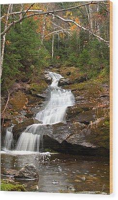 Spur Brook Cascade Wood Print by Brett Pelletier