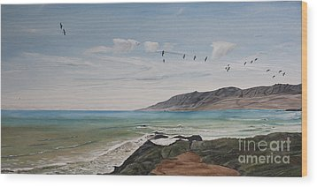 Squadron Of Pelicans Central Califonia Wood Print by Ian Donley