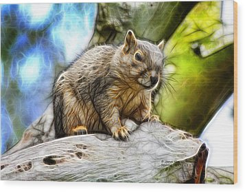 Squirrel - 8379- F - S Wood Print by James Ahn