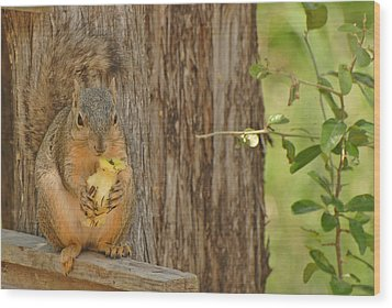 Wood Print featuring the photograph Squirrel And Apple by Susan D Moody