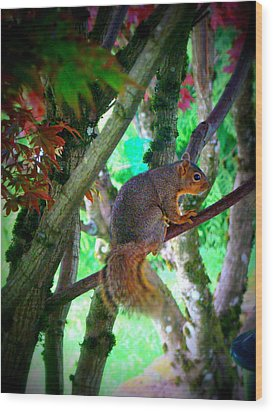 Squirrel In My Tree Wood Print by Lisa Rose Musselwhite